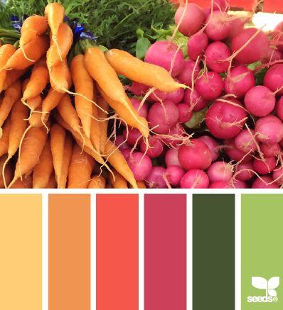 12d0c3c4953d03c033378879a3bae362--color-combos-color-schemes